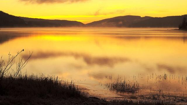 沼泽下的夕阳