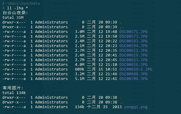 ls cmd 输出文件夹列表
